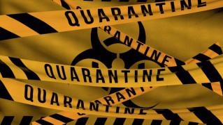 karantin-koronavirus