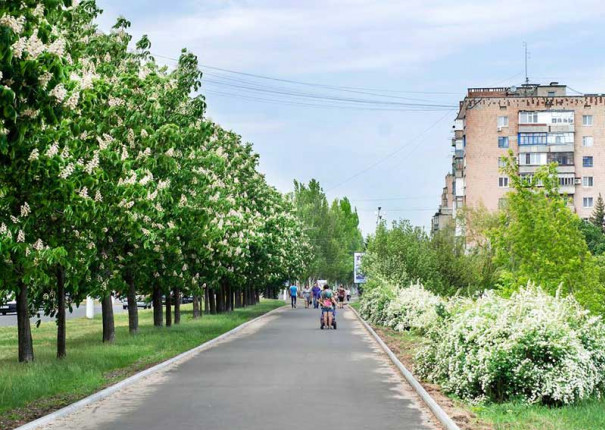 vasil-bazilev-dvortsovaya