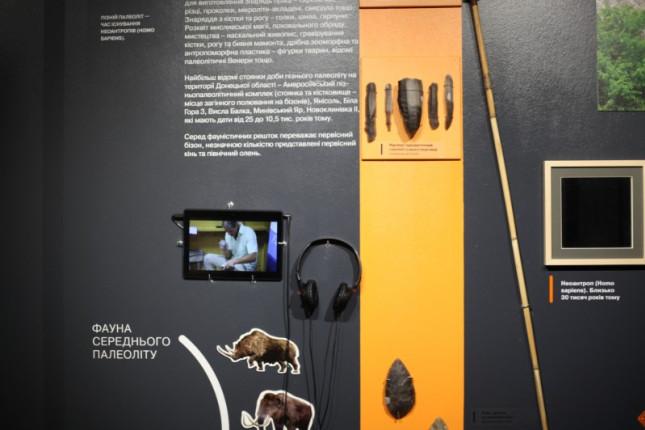 vystavka-v-muzee