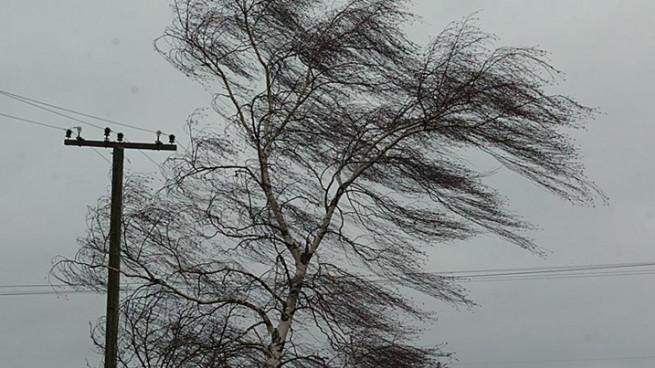 pogoda-veter