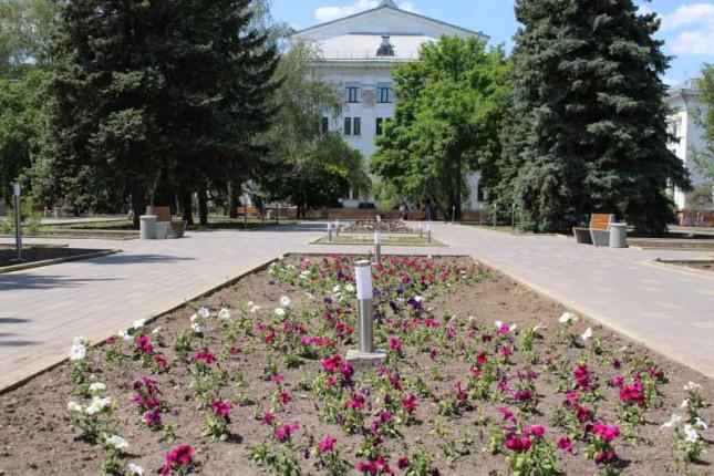 cvety-svera-labirint