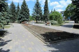 cvety-v-labirinte